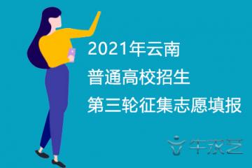 2021年云南普通高校招生第三轮征集志愿填报