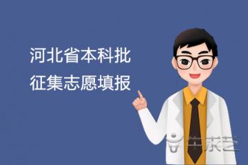 河北省本科批征集志愿填报