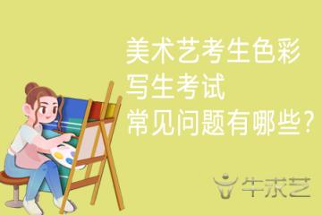 美术艺考生色彩写生考生常见问题有哪些?
