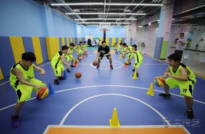 """""""双减""""政策落地 体育培训行业是否迎来新机遇?"""