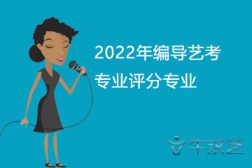 2022年编导艺考专业评分专业