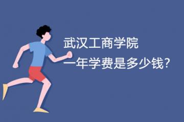 武汉工商学院一年学费是多少钱?