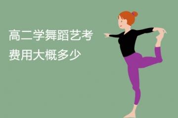 高二学舞蹈艺考费用大概多少