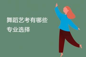 舞蹈艺考有哪些专业选择 都考什么内容
