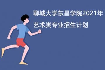 聊城大学东昌学院2021年艺术类专业招生计划