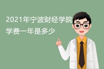 2021年宁波财经学院学费一年是多少